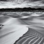 David Newton, The Silence of the Earth 1