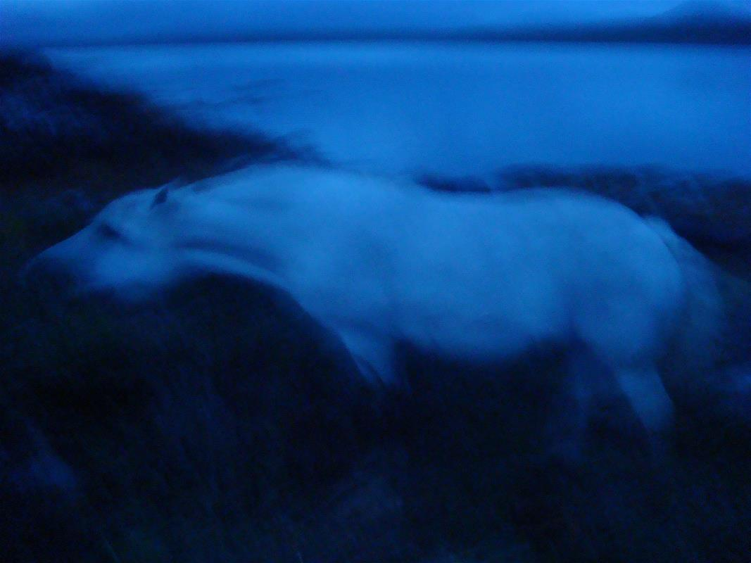 Kate Hunt, Connemara Spectre 3